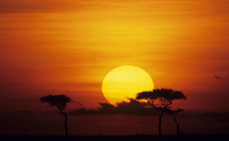Мови Африки