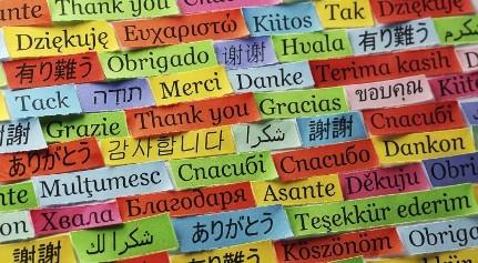 языки для бизнеса