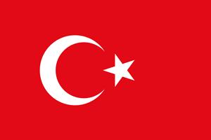 гид по турецкому языку